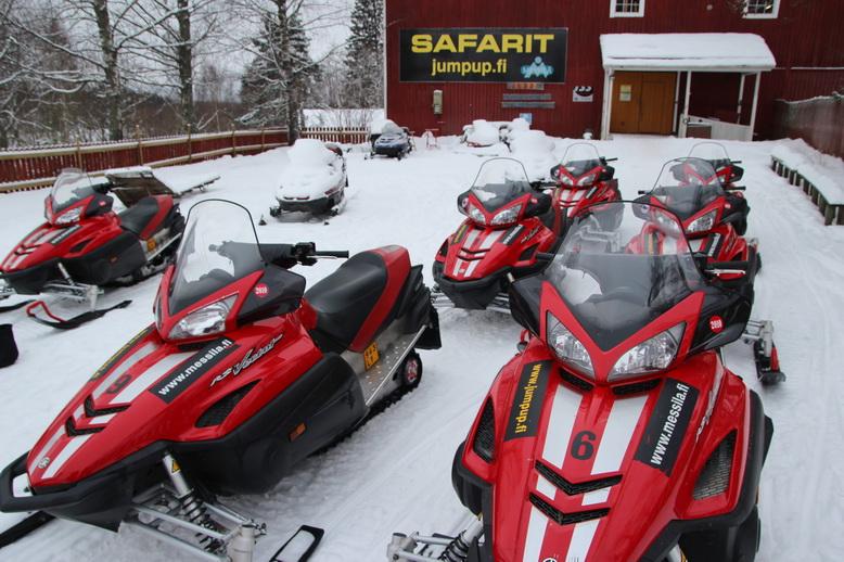 Снежные сафари